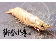 大尾明蝦3P